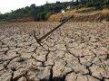 Засуха аукнется в кошельках