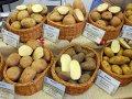 Картошка и девальвация